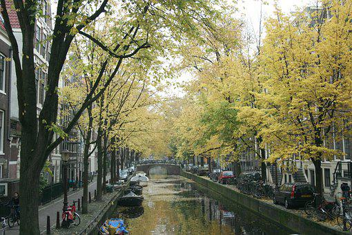 Amsterdam, Water Canal, Canal, Trees, Foliage, Houses
