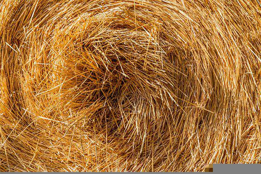 Straw, Straw Bales, Bale, Dry, Halme, Agriculture