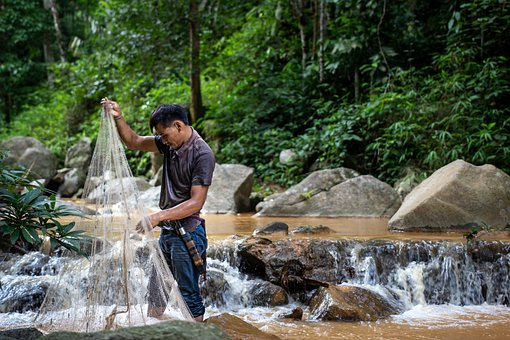 Man, Fishing, Net, River, Stream, Rocks, Nature, Travel