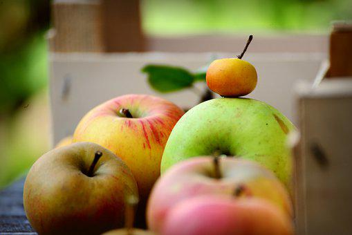 Apples, Fresh Apples, Fruits, Fresh Fruits, Produce