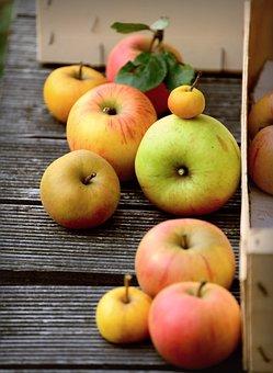 Apples, Fresh Apples, Fruits, Fresh Fruits, Produce