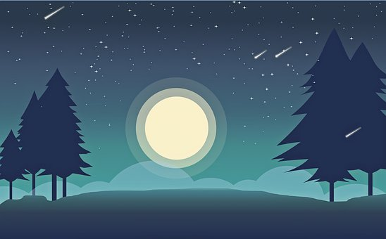 Moon, Forest, Trees, Leaves, Foliage, Night, Sky