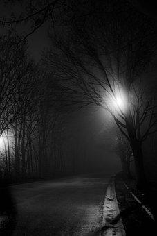Road, Highway, Fog, Night, City, Light, Dark, Urban