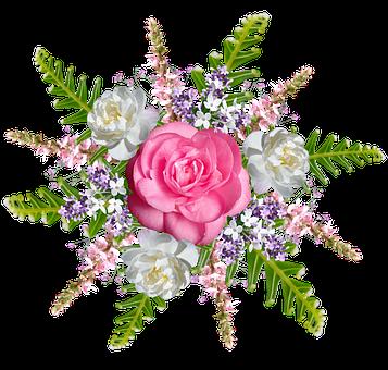 Flowers, Roses, Petals, Plants, Design, Floral, Pattern