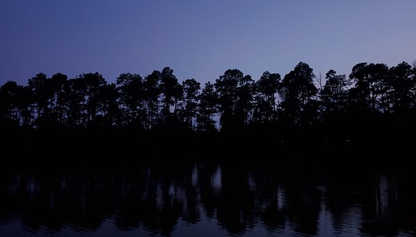 Trees, Silhouette, Reflections, Lake, Dusk, Twilight