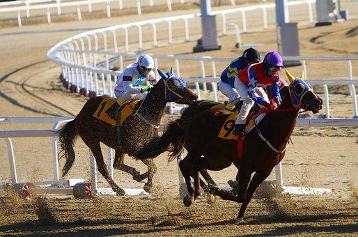 Racing, Horse Racing, Equestrian, Equine, Race