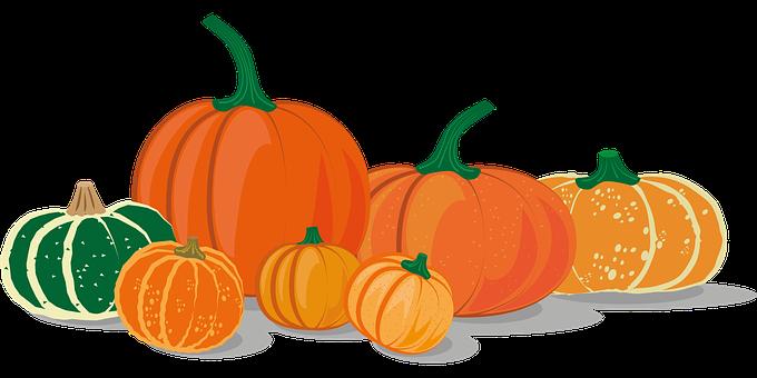 Pumpkins, Squash, Icon, Pumpkin Icon, Pumpkin Drawing