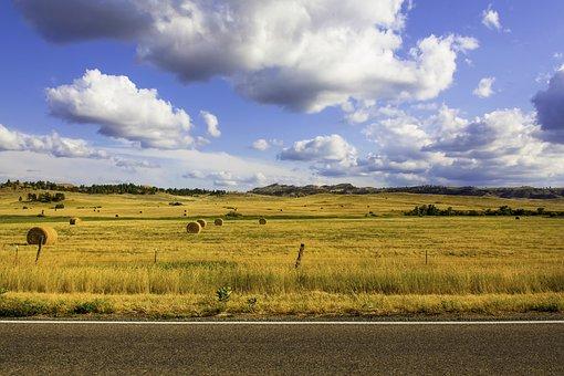 Farm, Hay Farm, Hay Bales, Stubble, Hay, Landscape