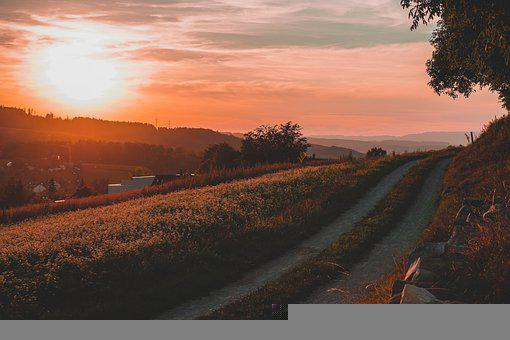Trail, Path, Lane, Way, Sunset, Hills, Grass, Nature