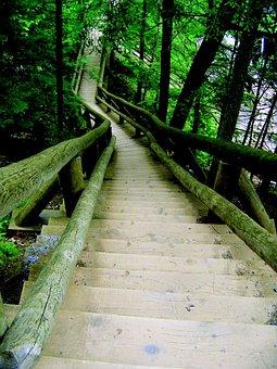 Ladder, Truro, Canada, Nova Scotia, Park