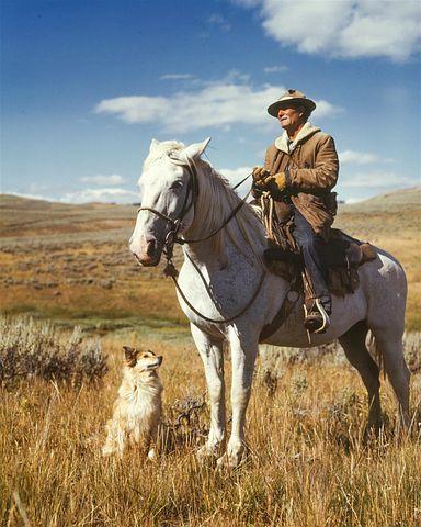 Farmer, Man, Shepherd, Dog, Horse, 1940s, Forties