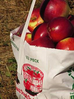 Apples, Fruit, Food, Red, Fresh, Healthy, Organic