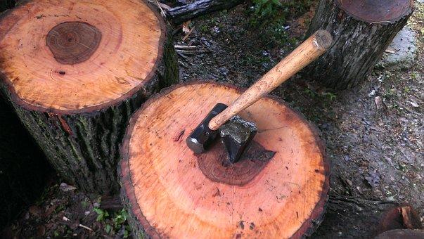 Wood, Hammer, Job, Working, Lumber, Nail, Equipment