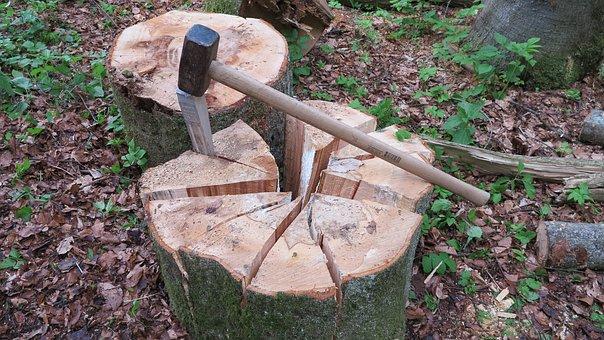 Wedge, Wood Chop, Tree Segments, Kreissekmente, Hammer