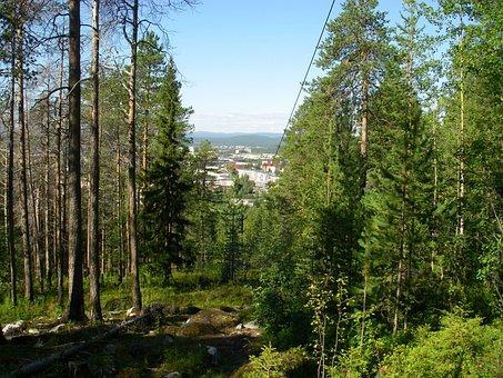 Forest, Mountain, Nature, Landscape, Rocks, Slopes, Efi