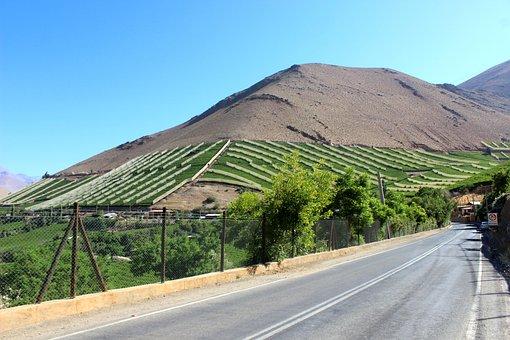 Mountain, Chile, Elqui, Pisco