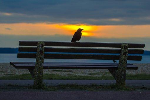 Lee On Solent, England, Sunset, Sea