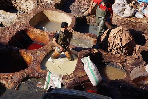 Morocco, Fes, Travel, Leather, Tannery
