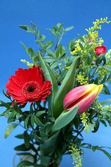 Bouquet, Flowers, Flower Arrengement, Arrangement