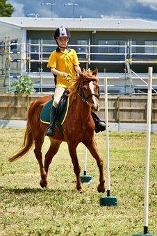 Horseback Rider, Young Horseback Rider, Riding Horse
