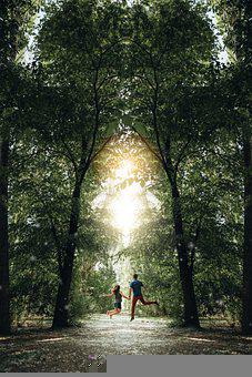 Couple, Jumps, Trees, Jumping Couple, Forest