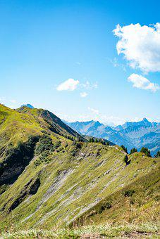 Mountains, Grassmvegetation, Forest, Alpine, Panorama