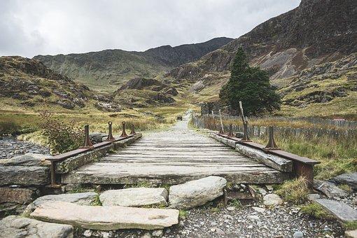 Mountains, Trees, Bridge, Pathway, Trail, Vegetation