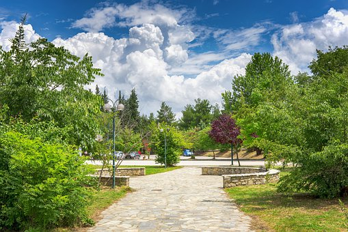 Park, Trees, Leaves, Foliage, Trail, Pathway, Clouds