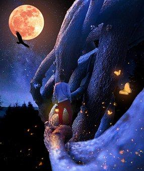 Fantasy, Magical, Woods, Moon, Night, Moonlight