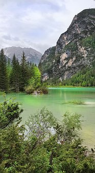 Lake, Mountains, Trees, Forest, Alps