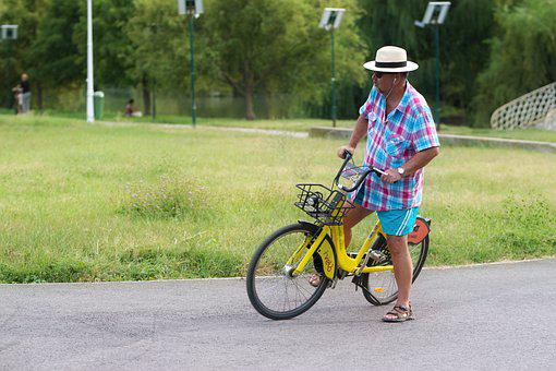 Man, Adult, Hat, Bicycle, Alley, Park, Nature, Trees