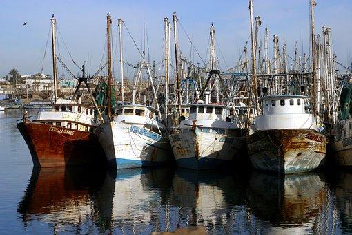 Boats, Fishing Boats, Port, Pier