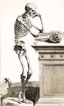 Skeleton, Skull, Bones, Thinking, Standing, Casual