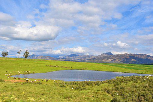 Landscape, Nature, Lake, Water, Countryside, Rural