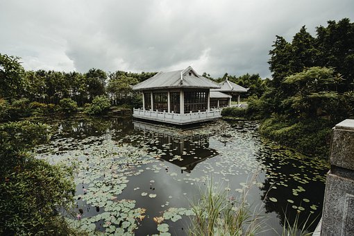 Pavilion, Pond, Lily Pads, Water Lilies, Trees