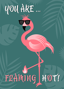Flamingo, Bird, Bill, Sunglasses, Quote