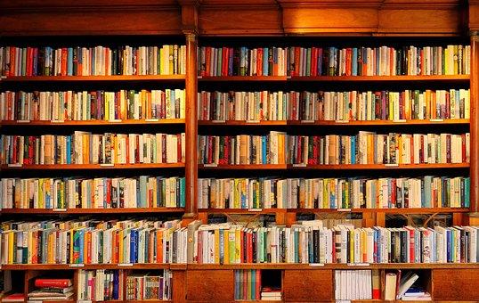 Books, Bookshelves, Library, Bookshelf, Living Room