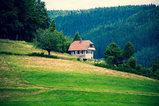 Hut, House, Forest, Mountain, Meadow, Sky, Hill, Nature