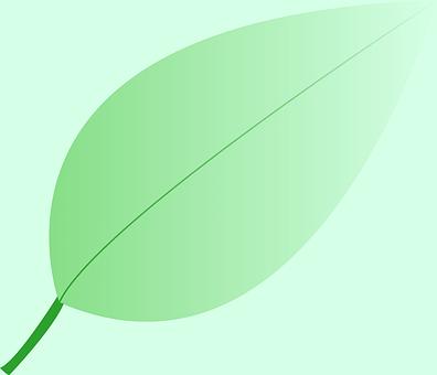 Leaf, Plant, Nature, Green, Flora, Organic, Icon