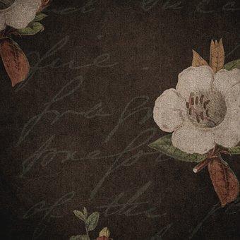Flowers, Font, Floral, Vintage, Pattern, Background