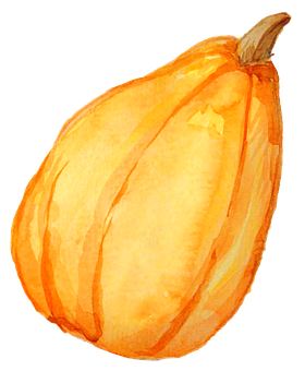 Pumpkin, Autumn Season, Drawing, Pumpkin Drawing