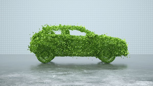 Leaves, Car, Sustainable Car, Sustainability