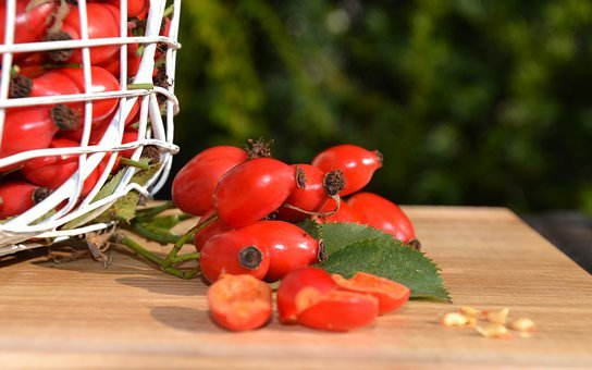 Rose Hip, Fruits, Harvest, Rose Haw, Rose Hep, Dog Rose