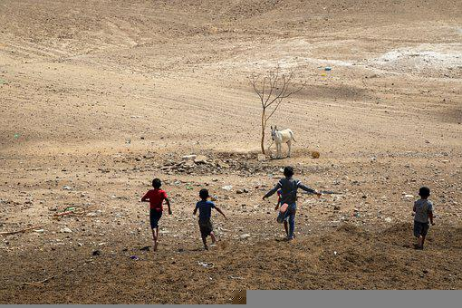 Children, Desert, Rocks, Tree, Donkey, Animal, Nomads