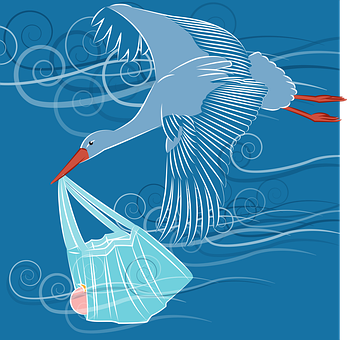 Stork, Baby, Sky, Mask, Protection, Flight, Feathers