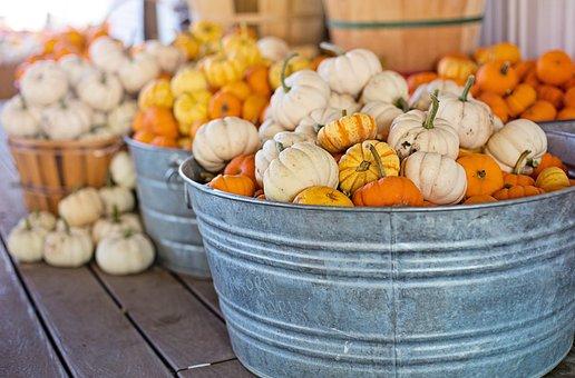 Little Pumpkins, Small Pumpkins, Buckets