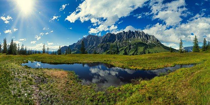 Vierrinnenköpfe, Alpine, Mountains, Meadow, Wetlands