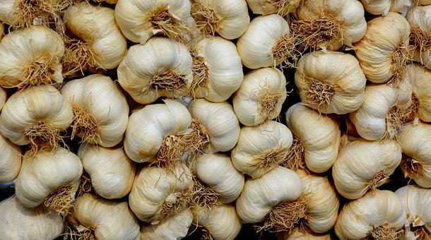 Garlic, Garlic Heads, Garlic Bulbs, Produce, Harvest