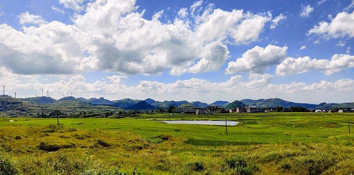 Farm, Field, Meadow, Farmland, Cropland, Rural