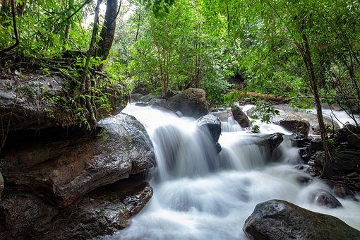 Cascades, Stream, Forest, River, Brook, Creek, Water
